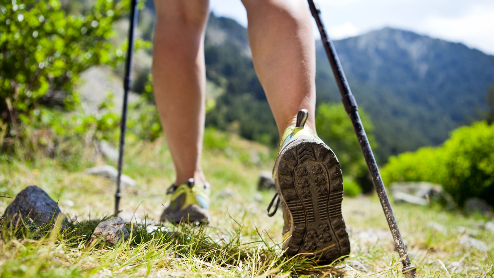 Have you ever wanted to try Nordic Walking?
